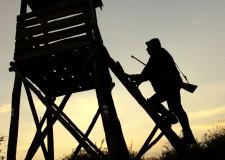 """Ha kifejezetten vaddisznóhajtásra keresünk """"nagypuskát"""", vagy ha az alföldi őzvadászatok távlövéseire szeretnénk alkalmas fegyvert szerezni, más és más kaliberben kell gondolkodnunk"""