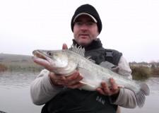 Egyik korai vertikális horgászatom alkalmával történt meg velem, hogy bár az első kapást a süllő mohósága következtében halra tudtam váltani, a nap folyamán az összes további kapást üres bevágások követék