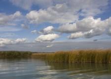 2014 – A horgászatra vonatkozó legfontosabb jogszabályi előírások  a halgazdálkodási törvény és végrehajtási rendeletéből