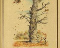 Bors Richárd – Avarpaplan – Az erdőkerülő