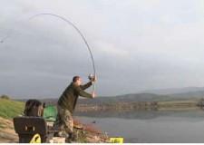 Házibuhera – Pontos etetés és horgászat nagy távolságra: a siker kulcsa!