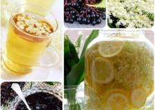 Recept: Itt a bodzaszezon! – Szörp, lekvár, sütemény, ínyencség, méz, tea, pezsgő