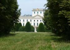 Megkezdődik az Esterházy-Kastélypark Lés erdejének helyreállítása