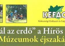 """""""Muzsikál az Erdő"""" a Hírös Városban a Múzeumok Éjszakáján"""