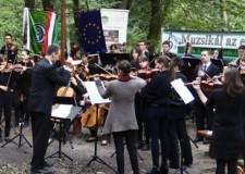 Muzsikál az Erdő a Királyi Erdőben -2014. október 26-i adásból