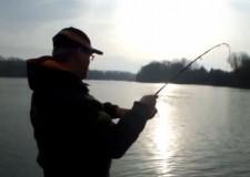 BREAKING NEWS – 40 kg-os harcsa fogása UL pergető bottal! – 2014.11.13 – Tisza-tó