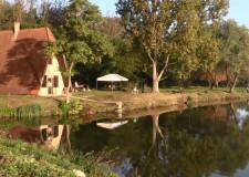 2014. november 9: A Lovasberényi Erdészet gyöngyszeme: a Lujza-majori erdei tó