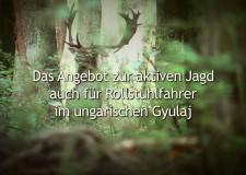 Das Angebot zur aktiven Jagd auch für Rollstuhlfahrer im ungarischen Gyulaj