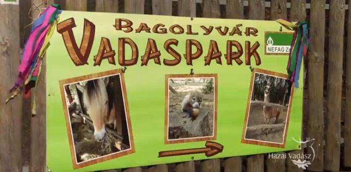 HAZAI VADÁSZ – Madárszemmel – Bagolyvár Vadaspark – 2015.02. 14