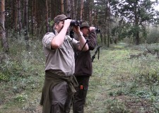 Cserkelő vadászaton a darvasi vadászkerületben