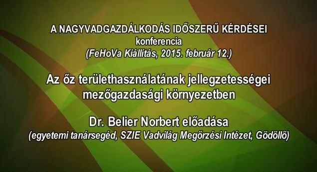 9 – Nagyvadgazdálkodás – 2015.02.12 – Dr. Belier Norbert egyetemi tanársegéd