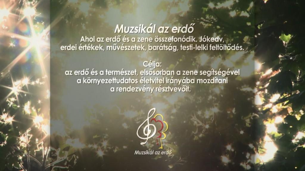 Muzsikál az Erdő – Találkozzunk 2015-ben is!