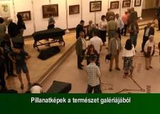 Pillanatképek a természet galériájából – 2015. május 24-i adás