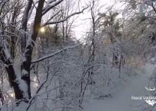 Hűsítő a hőségben: A téli Vértes – 2015. január