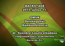 OMVK – Dámkonferencia – Dr. Szendrei László előadása – 2015.06.11