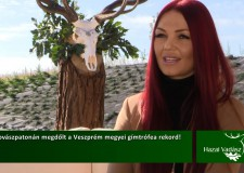 Műsorajánló – HAZAI VADÁSZ TV Magazin – 2015. október 18-i adás