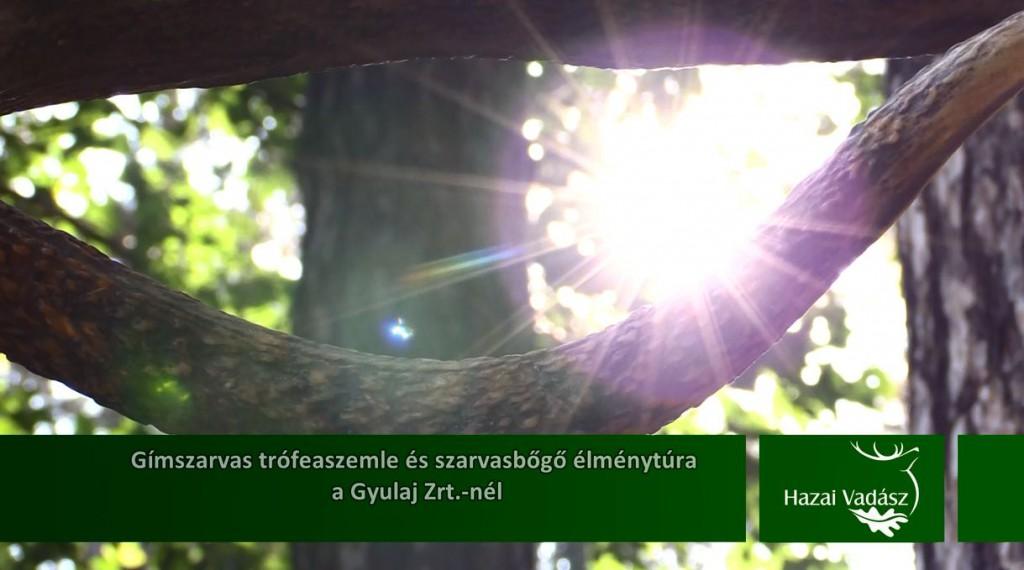 Ajánló – HAZAI VADÁSZ TV Magazin – 2015. október 11-i adás