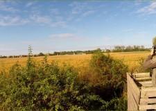 Madárszemmel képek – Veszprém megyei gímszarvasrekord elejtésének területe – 2015.