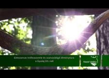 Gímszarvas trófeaszemle és szarvasbőgő élménytúra a Gyulaj Zrt.-nél – 2015.10.11-i adás