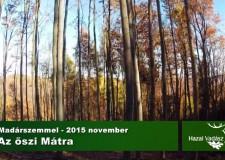 Az őszi Mátra madárszemmel – 2015.11.05.