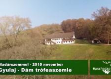 Dám trófeamustra a Gyulaj Erdészeti és Vadászati Zrt.nél – 2015.11.05. – Madárszemmel