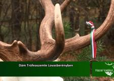 Dám Trófeaszemle Lovasberényben – 2015. december 6-i adás
