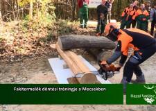 Fakitermelők döntési tréningje a Mecsekben – 2015. december 6-i adás