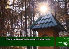 HAZAI VADÁSZ TV Magazin – 2015. december 6-i adás