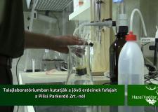 Talajlaboratóriumban kutatják a jövő erdeinek fafajait – 2016.02.14-i adás