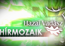 HÍRMOZAIK – HAZAI VADÁSZ – 2016.02.06-i adás