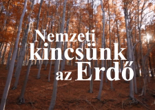 HAZAI VADÁSZ adások – ECHO-TV – 2016.03.20–27