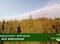 Madárszemmel – A Jeli Arborétum – 2016.01.14