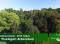 Madárszemmel – A Tiszaigari Arborétum – 2016. május