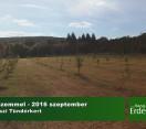 Madárszemmel – Tündérkertek V. Találkozója – 2016.09.24 – Budakeszi