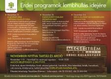 Erdei Programok a Mecsekerdő Zrt.-nél