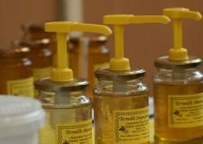 Lendületesen fejlődik a méhészeti ágazat