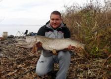 Fogási napló – Tisza-tó – 2016. november