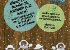 Évzáró utazás a Csömödéri állami erdei vasúttal – 2016.12.29.