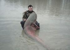 2017-től Magyarországon március 20. a halak napja