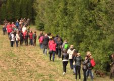 """Életképek – """"Élménypedagógia az erdőben"""" – 2017. 04. 07"""