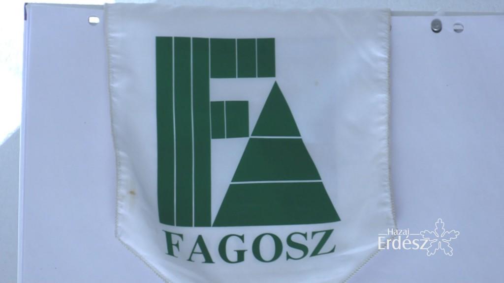 4_FAGOSZ