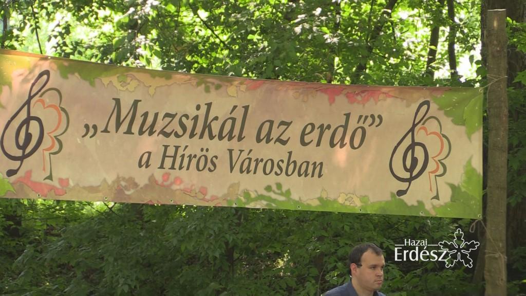 Muzsikál az Erdő – Ahol a zene és az erdő összefonódik_2017.09.28
