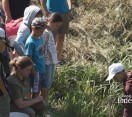 Dévai gyerekek táboroztak a Bakonyerdő Zrt.-nél – 172. adás – 2017.07.22-i adás
