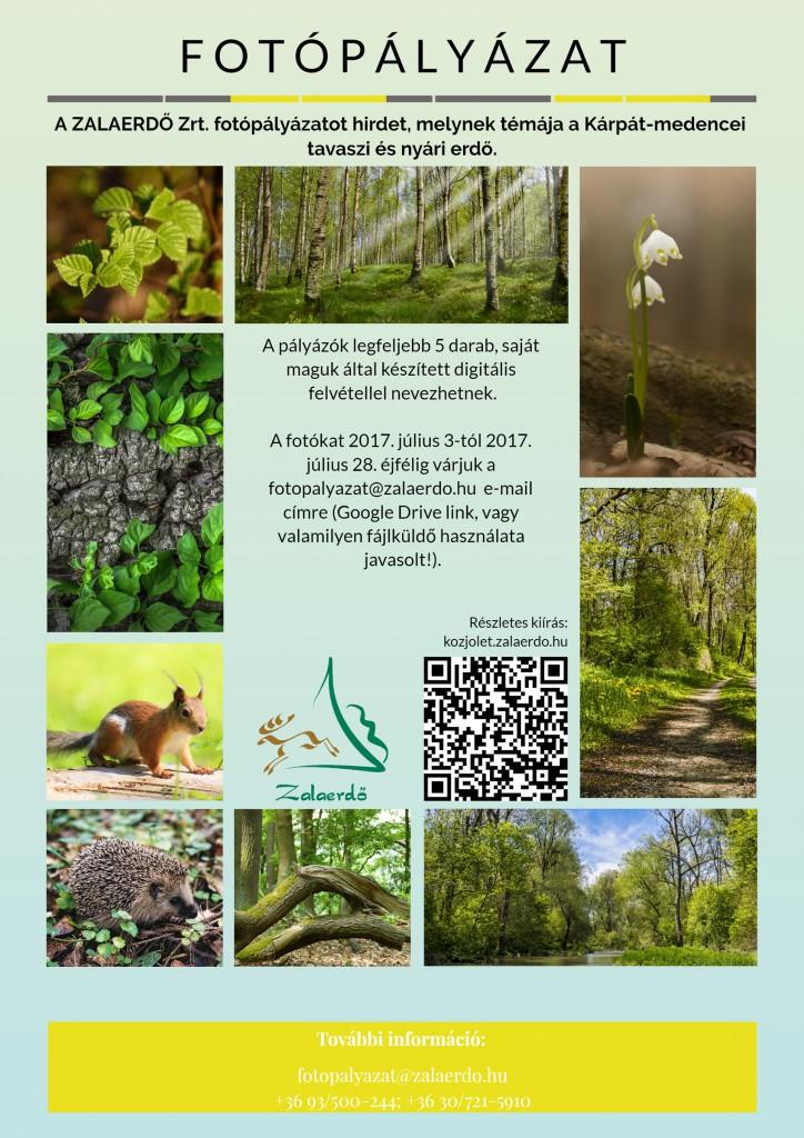 A ZALAERDŐ Zrt. fotópályázatot hirdet, melynek témája a tavaszi és a nyári erdő_2017.07.04