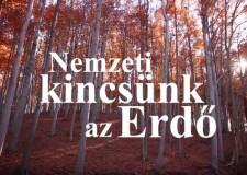 Elindult a Nemzeti kincsünk az Erdő című kisfilm sorozat sugárzása az MTVA M5 csatornán! – 2017.07.06