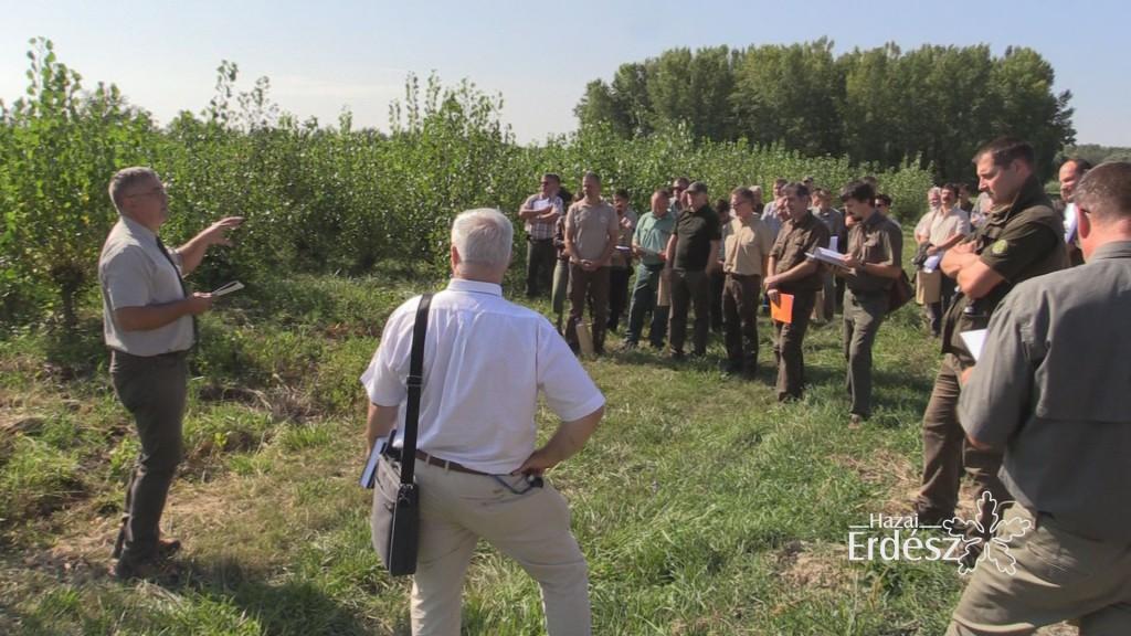 Ártéri erdők őshonos fafajainak génmegőrzése a Gemenc Zrt.-nél