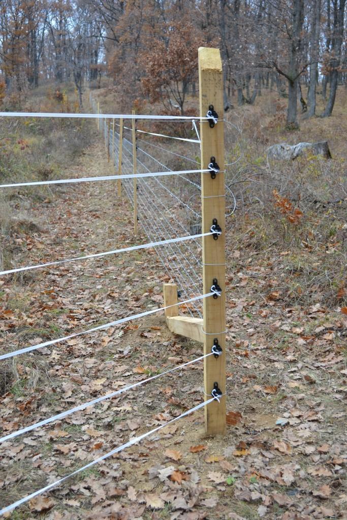 Elektromos vadkárelhárító kerítés