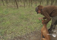 """""""A magyar vizsla a legokosabb kutya a világon!"""" – Mirjam Olowoyo versenyző, XVIII. CACIT Speciális Magyar Vizsla Verseny"""