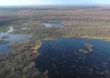 ZÖLD VILÁG – Premier – 12.29. péntek 17:30 – ECHO-TV – Kaszó erdeinek téli varázsa – A Baláta-tó késő ősszel és télen