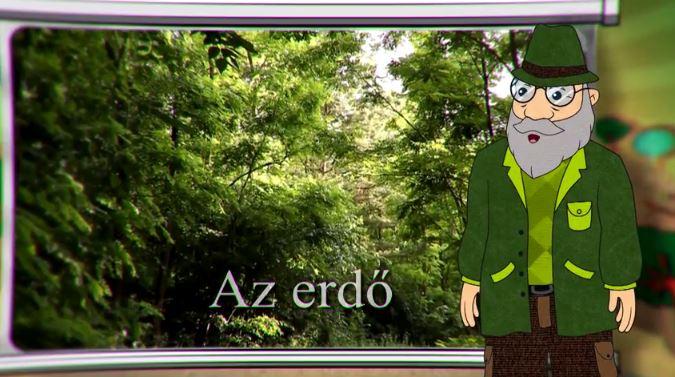EEBM - Az erdő